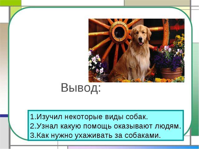Вывод: 1.Изучил некоторые виды собак. 2.Узнал какую помощь оказывают людям. 3...