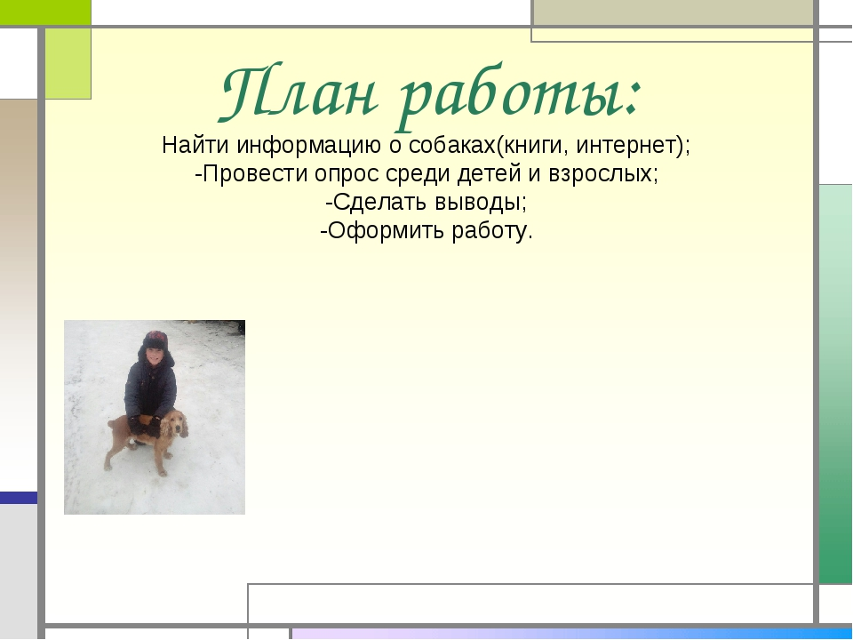 План работы: Найти информацию о собаках(книги, интернет); -Провести опрос сре...