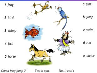 Can a frog jump ? Yes, it can. No, it can`t
