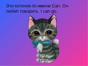 Это котенок по имени Can. Он любит говорить I can go.