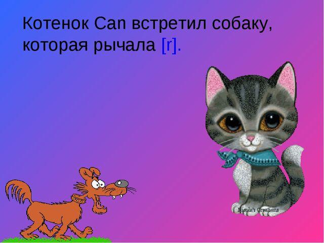 Котенок Can встретил собаку, которая рычала [r].
