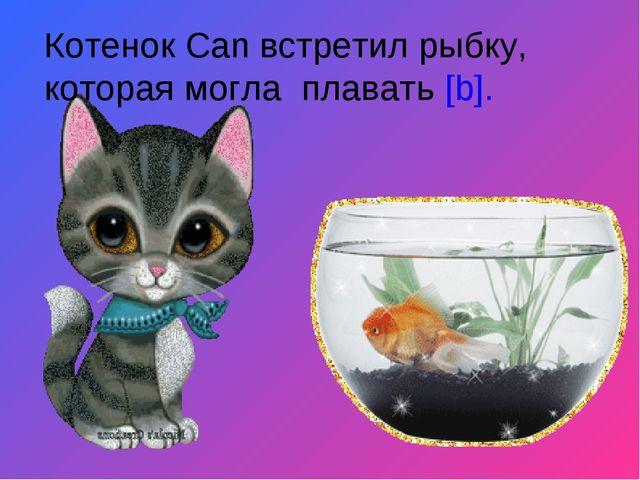 Котенок Can встретил рыбку, которая могла плавать [b].