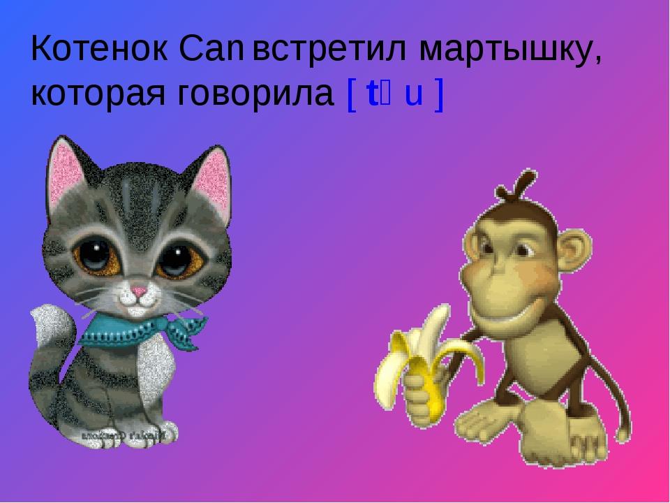 Котенок Can встретил мартышку, которая говорила [ tʃ u ]
