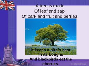A tree is made Of leaf and sap, Of bark and fruit and berries. It keeps a bir