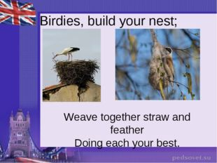 Birdies, build your nest; Weave together straw and feather Doing each your b