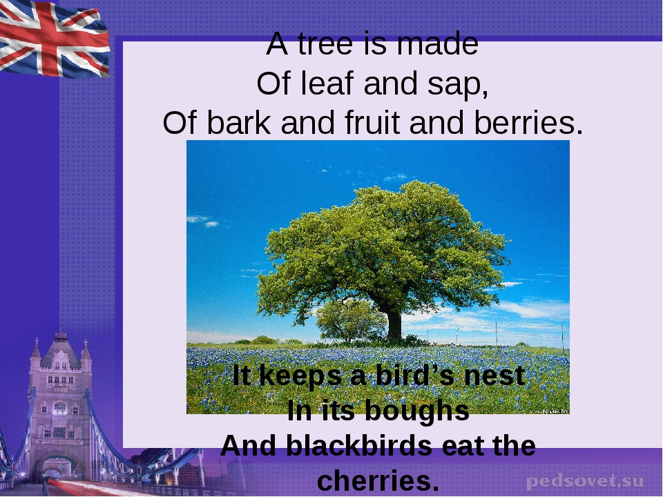 A tree is made Of leaf and sap, Of bark and fruit and berries. It keeps a bir...