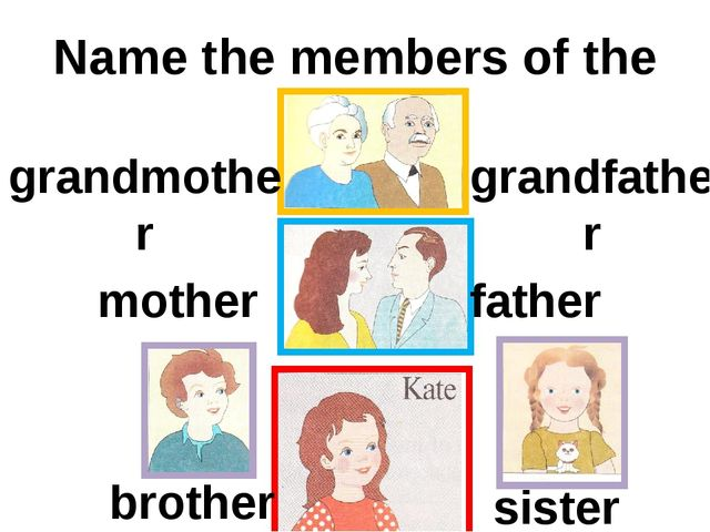 Name the members of the family grandmother grandfather mother father brother...
