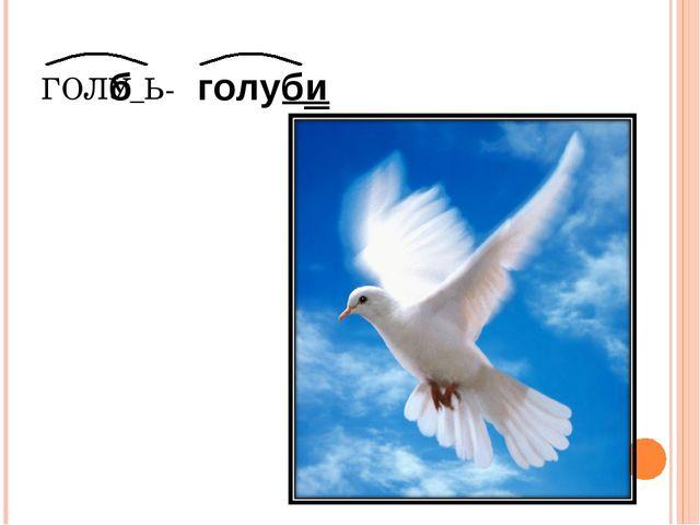 ГОЛУ_Ь- б голуби