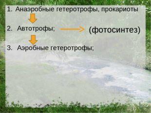 Анаэробные гетеротрофы, прокариоты Автотрофы; Аэробные гетеротрофы; (фотосинт