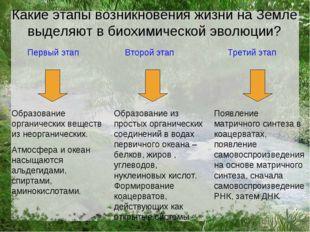 Первый этап Второй этап Третий этап Образование органических веществ из неорг