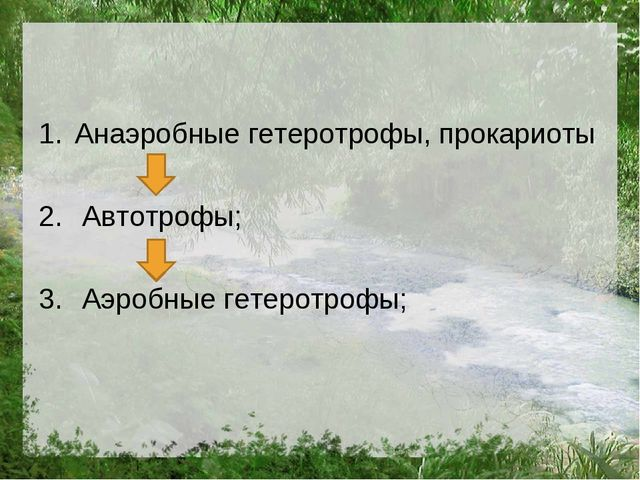 Анаэробные гетеротрофы, прокариоты Автотрофы; Аэробные гетеротрофы;