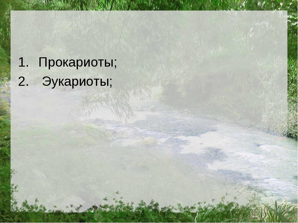 Прокариоты; Эукариоты;