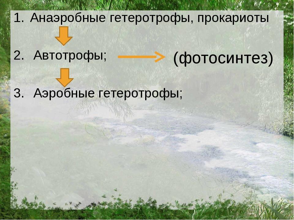 Анаэробные гетеротрофы, прокариоты Автотрофы; Аэробные гетеротрофы; (фотосинт...