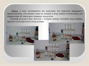 Вывод: в ходе эксперимента мы выяснили, что вещества природного происхождения