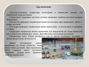 Заключение Кислотно-основные индикаторы необходимы в химическом анализе, для