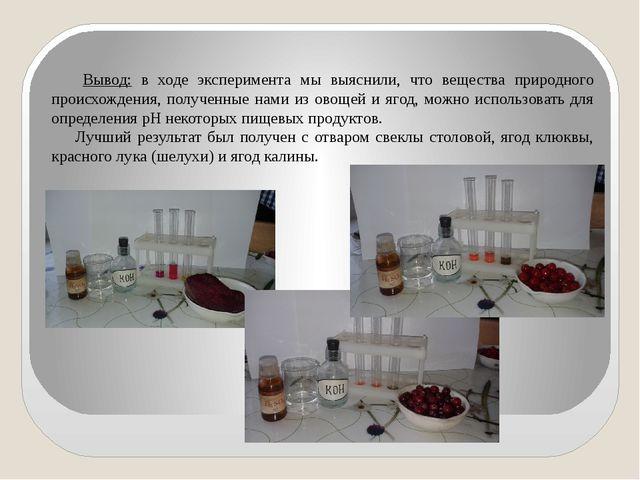 Вывод: в ходе эксперимента мы выяснили, что вещества природного происхождения...