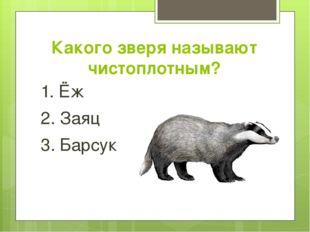 Какого зверя называют чистоплотным? 1. Ёж 2. Заяц 3. Барсук