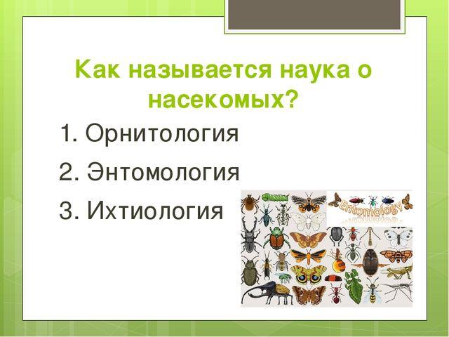 Как называется наука о насекомых? 1. Орнитология 2. Энтомология 3. Ихтиология
