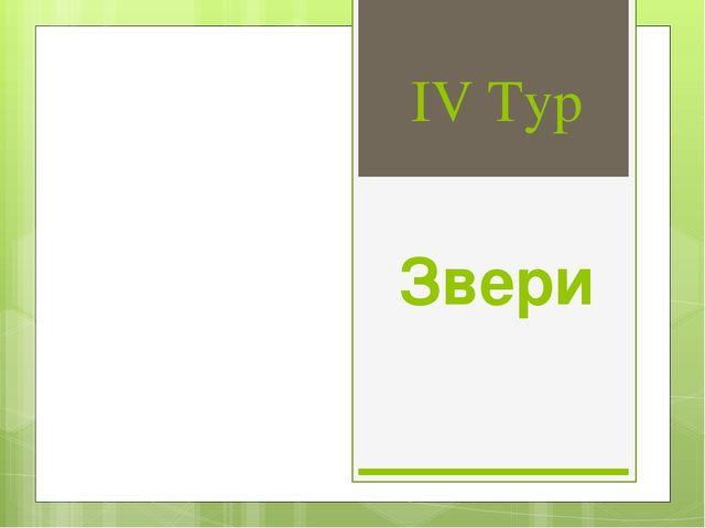 IV Тур Звери