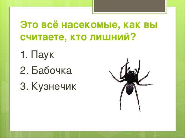 Это всё насекомые, как вы считаете, кто лишний? 1. Паук 2. Бабочка 3. Кузнечик