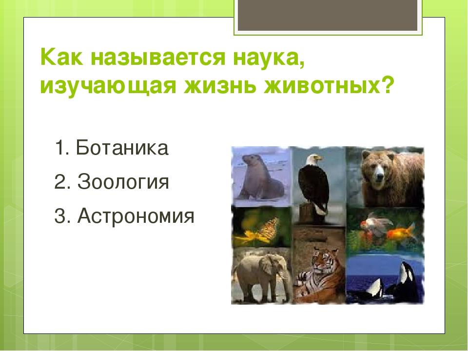 Как называется наука, изучающая жизнь животных? 1. Ботаника 2. Зоология 3. Ас...
