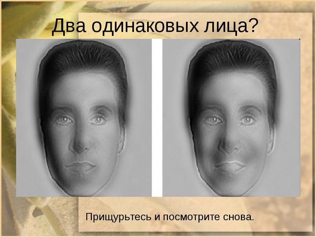 Два одинаковых лица? Прищурьтесь и посмотрите снова.