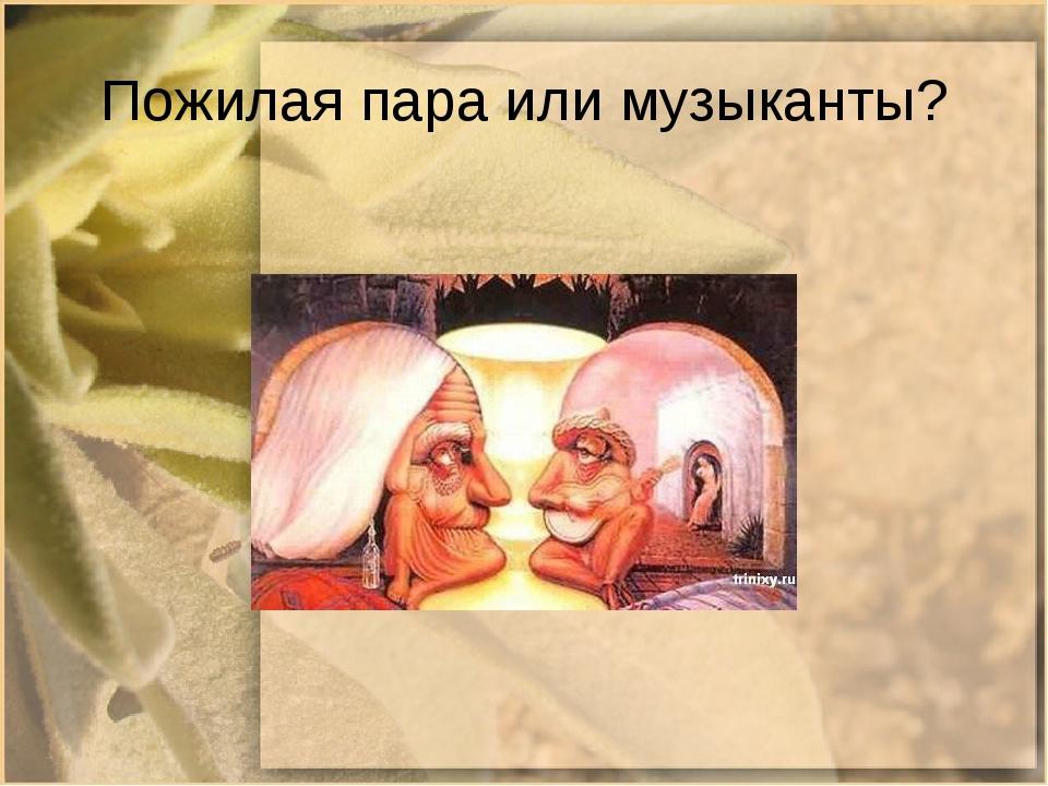 Пожилая пара или музыканты?