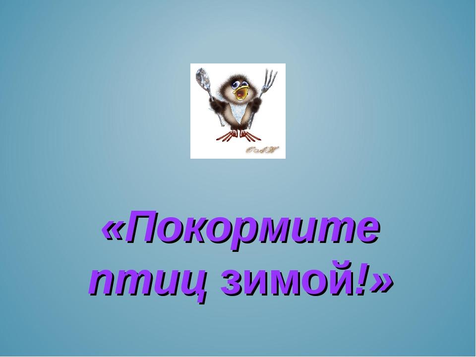 «Покормите птиц зимой!»