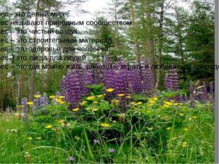 Лес –это целый мир Лес называют природным сообществом Лес – это чистый воздух