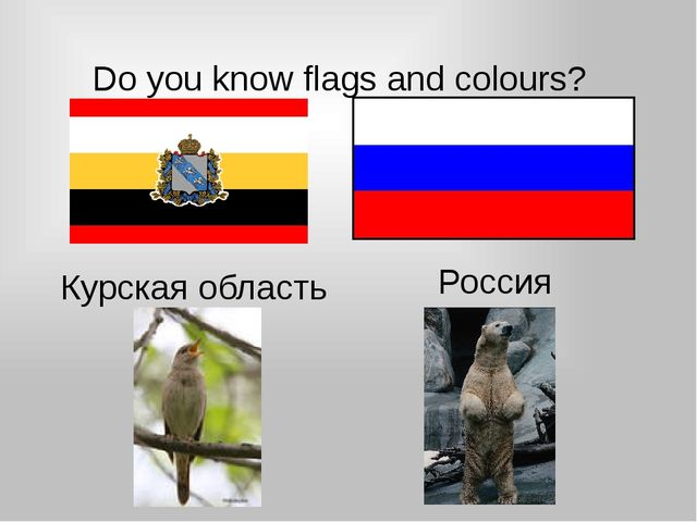 Do you know flags and colours? Курская область Россия