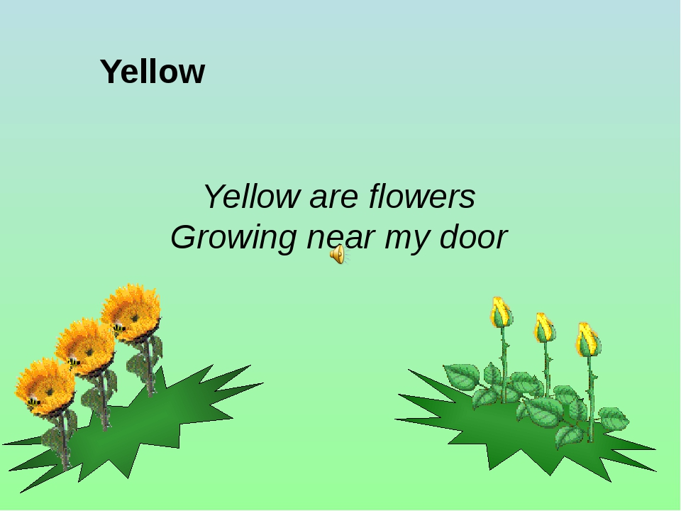 Yellow Yellow are flowers Growing near my door