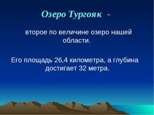 Озеро Тургояк -  второе по величине озеро нашей области. Его площадь 26,4 ки