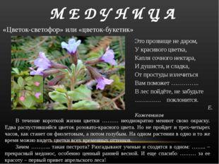В течение короткой жизни цветки ……… неоднократно меняют свою окраску. Едва р