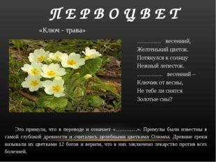 П Е Р В О Ц В Е Т ………… весенний, Желтенький цветок. Потянулся к солнцу Неж