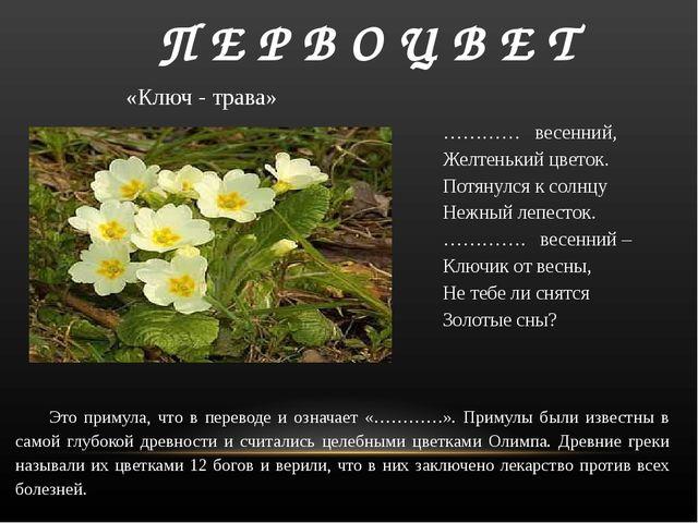 П Е Р В О Ц В Е Т ………… весенний, Желтенький цветок. Потянулся к солнцу Неж...