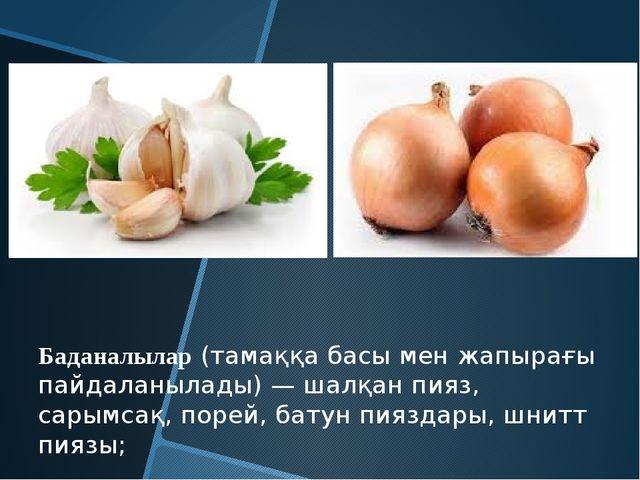 Баданалылар(тамаққа басы мен жапырағы пайдаланылады) — шалқан пияз, сарымсақ...