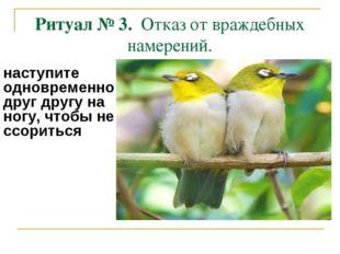 Ритуал № 3. Отказ от враждебных намерений. наступите одновременно друг другу