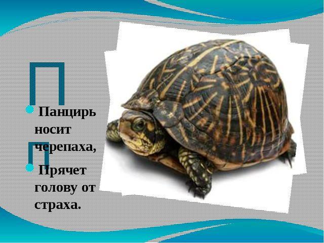 Пп Панцирь носит черепаха, Прячет голову от страха.