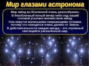 Мир звёзд во Вселенной очень разнообразен. В безоблачный ясный вечер небо