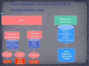 НДПА «Хальк» («Свобода») Парчам («Знамя») Провинциальные малообеспеченные по