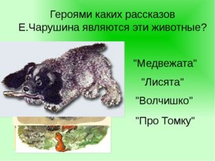 """Героями каких рассказов Е.Чарушина являются эти животные? """"Медвежата"""" """"Про То"""