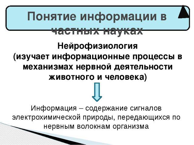 Понятие информации в частных науках Нейрофизиология (изучает информационные...