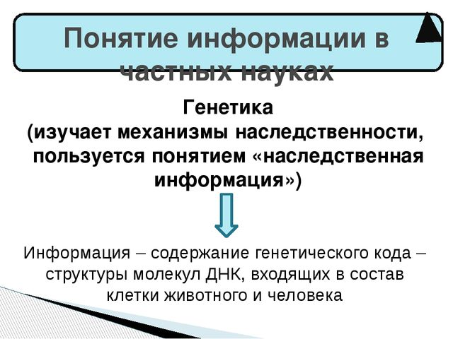 Понятие информации в частных науках Генетика (изучает механизмы наследственн...