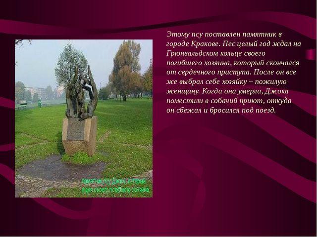 В 1995 году на Южном шоссе Тольятти в автомобильной аварии погибла молодая п...