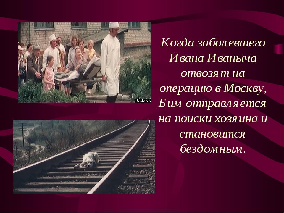 Он встречает множество людей— добрых и злых, старых и молодых. Тётка, Серый,...