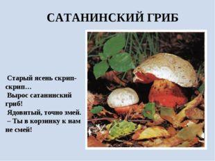 Старый ясень скрип-скрип… Вырос сатанинский гриб! Ядовитый, точно змей. – Ты