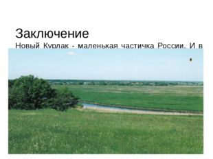Заключение Новый Курлак - маленькая частичка России. И в его истории видна и