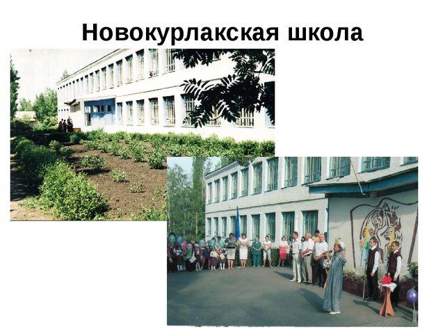 Новокурлакская школа