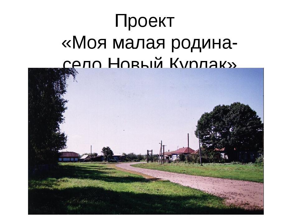 Проект «Моя малая родина- село Новый Курлак»
