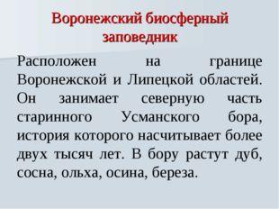 Воронежский биосферный заповедник Расположен на границе Воронежской и Липецко